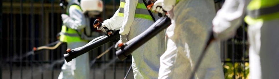 exterminators.gr Αθήνα Απεντομώσεις Μυοκτονίες Απολυμάνσεις